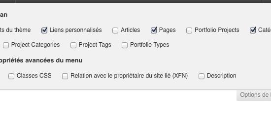 option-ecran-wordpress